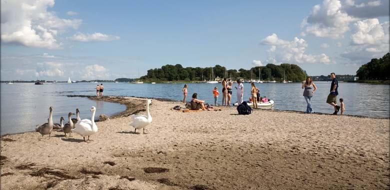 Briefe Nach Dänemark : Darum nach dänemark aabenraa kommune