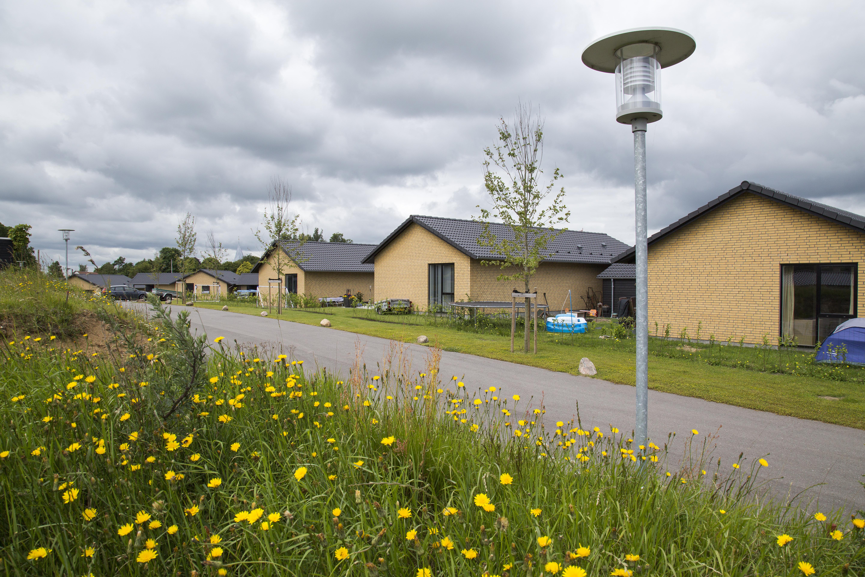 hus til leje aabenraa kommune